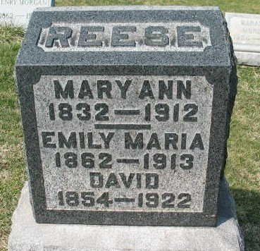 David Reese tombstone